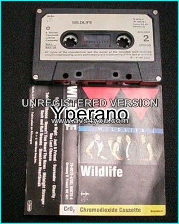 WILDLIFE: s.t [TAPE] FM (Overland brothers) + Bad Company members. Killer A.O.R.