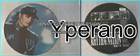 "Janet Jackson: Rhythm nation 12"" picture disc"