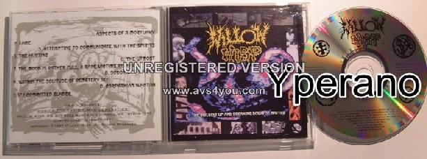 WILLOW WISP: The Building Up And Breaking Down Of Matter CD. SUPER GOTH!! Original, rare copy!! Check video!