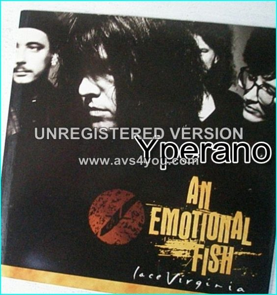 "AN EMOTIONAL FISH: Lace Virginia 7"" Check video (featuring Kate Moss)"