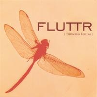 FLUTTR EFFECT: Trithemis Festiva CD. no one else out there doing quite what theyre doing PROG CHECK AUDIO SAMPLES