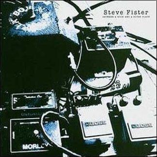 Steve FISTER: Between a Rock and a Blues Place CD. US blues w. Bissonette,Tommy Aldridge,Tony Franklin, Stu Hamm. Check samples