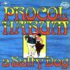 PROCOL HARUM: A Salty Dog LP [Music for Pleasure]. Prog Rock. Their best album. Check video