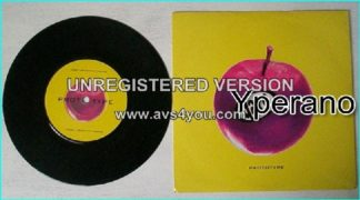 "GARP: Prototype 1994 limited edition 7"" (2 songs). Check whole song. HIGHLY RECOMMENDED!!"