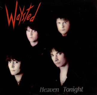 "WAYSTED: Heaven Tonight 7"" Check video + sample."
