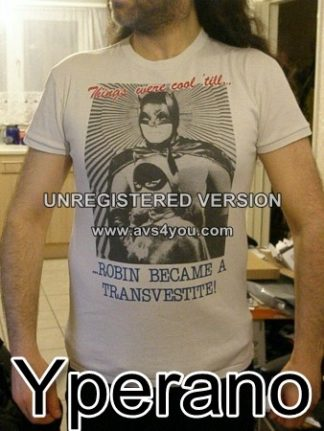 Things were cool, 'till Robin became a Transvestite: T-shirt. Batman and Robin
