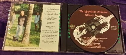 The NEAPOLITAN ORCHESTRA: Almost Syrup CD ULTRA RARE For fans of Pink Floyd, (mainly) Rush, Cream, Blue Oyster Cult